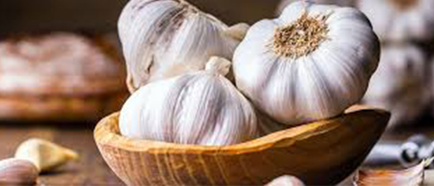 Six Super Foods to boost your immunity 2
